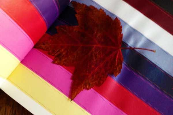 Pres efterårsblade i en bog