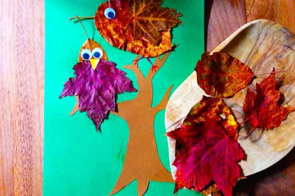 Lav fugle i træ af efterårsblade